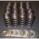 Kit, HIGH PERFORMANCE valve springs incl. titanium valve...